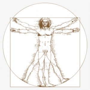 161-1610128_leonardo-da-vinci-vitruvian-man-tattoo-png-download.jpg