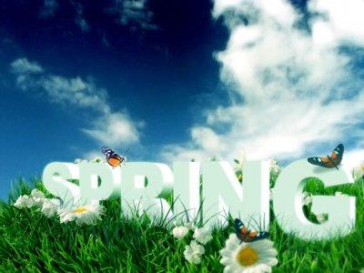 spring-06.jpg