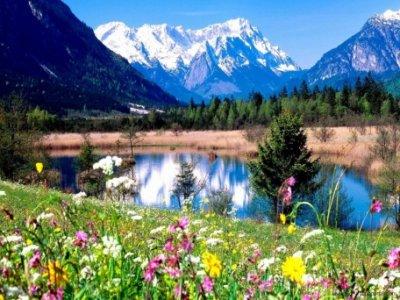 Spring Season Hd Wallpapers012.jpg