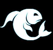 peshqit.png