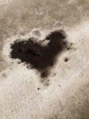 dark-cold-heart-diane-houy.jpg