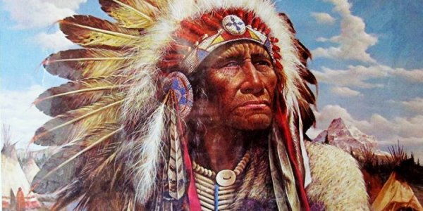The-wisdom-of-the-American-Indians-750x375.jpg