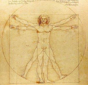 Uomo-Vitruviano-Leonardo-da-Vinci-analisi.jpg