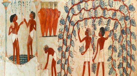 COPERTINA-Parete-ovest_Tomba-di-Nakht_-TT52_Necropoli-tebana_di_Sheikh-Abd-el-Qurna-800x445.jpg